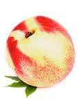 White Peach stock photography