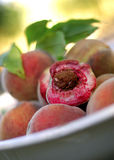 White Peaches royalty free stock photo