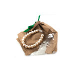 White pearl in paper bag Stock Images