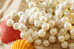 White pearl and seashells on sand Royalty Free Stock Images