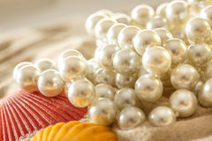 White pearl and seashells on sand Stock Images