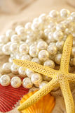 White pearl and seashells on sand Stock Photos
