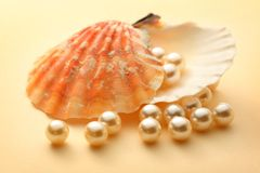 White pearls in seashell. Scattering white pearls in seashell Stock Photography