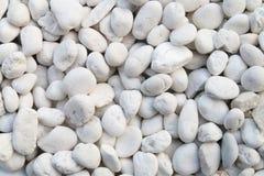 White pebble Stock Photography