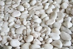 White pebbles royalty free stock images