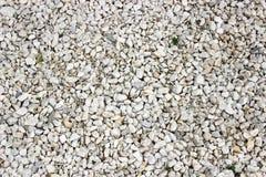 White pebbles. White, gray, black pebbles on the ground Royalty Free Stock Photo