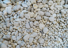 White pebbles. Suitable for background Stock Image