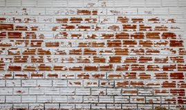White peeling painted as old red brick wall royalty free stock image