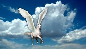 White Pegasus. A white pegasus, which is a mythological creature, flying through cloudy clear blue sky Stock Photography
