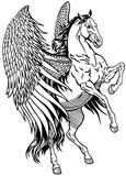 White pegasus Stock Photography