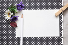White Pencil on Blank paper on Polka Dots Background Stock Image
