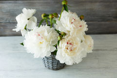White peonies in a vase on the boards Stock Images