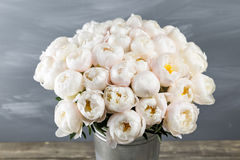 White peonies in vase. retro styled photo. close-up Royalty Free Stock Photography