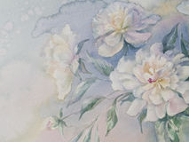 White peonies watercolor. Bouquet of white and rose peonies watercolor illiustration Stock Image