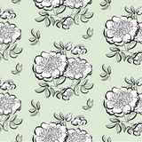 White peony floral sketch. spring flower vector illustration. bl Royalty Free Stock Photo