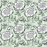 White peony floral sketch. spring flower Royalty Free Stock Photo