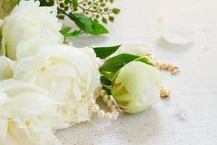 White peony flowers Royalty Free Stock Image