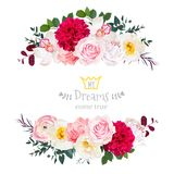 White peony, pink rose, orchid, carnation flowers, orchid, burgu. Ndy red dahlia, ranunculus vector design frame. Elegant wedding card. Horizontal floral banners Royalty Free Stock Photos