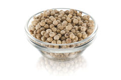 White pepper dish Stock Images