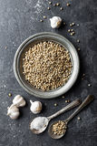 White pepper, garlic and salt on dark grey culinary background, various spices, directly above, flat lay Stock Photo