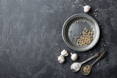 White pepper, garlic and salt on dark grey culinary background, various spices, directly above, flat lay Royalty Free Stock Images
