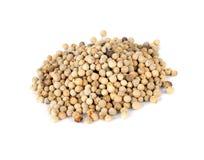 White pepper grains Stock Image