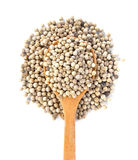 White Pepper Royalty Free Stock Photo