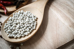 White pepper on ladle wood Stock Image