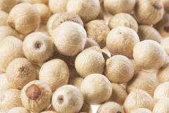White Pepper Macro Isolated Royalty Free Stock Photography