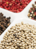 White pepper Stock Photography