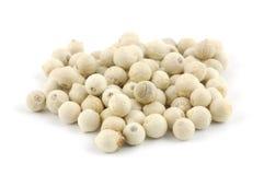 White peppercorns Royalty Free Stock Photo