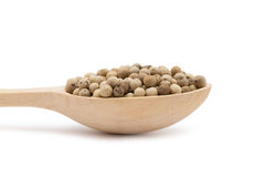 White peppercorns Royalty Free Stock Photography