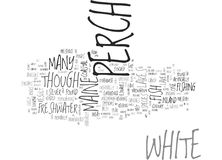 White Perch Word Cloud. WHITE PERCH TEXT WORD CLOUD CONCEPT Stock Photo