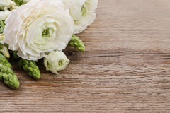 White persian buttercup flowers (ranunculus) and matthiola flowe Stock Photos