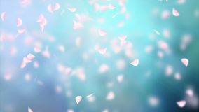 White petals of sakura falling on romantic abstract background. Looped 4K motion spring blossom graphic.