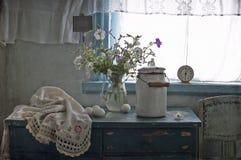 White petunia royalty free stock images
