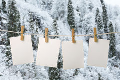 White photopaper on frozen trees Royalty Free Stock Photo