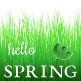 White phrase Hello Spring on green grass Stock Photo
