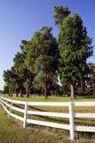 White Picket fence. Landscape view of a white picket fence on a large farm/ranch stock images
