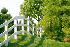 White Picket Fence. Going into the Trees Stock Photo
