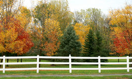 White Picket Fence. In the Fall Royalty Free Stock Photography