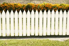 White picket fence. With garden flowers Stock Photo