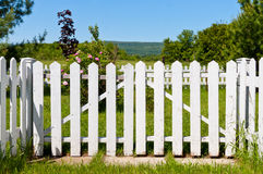 White picket fence. And a garden gate Royalty Free Stock Photo