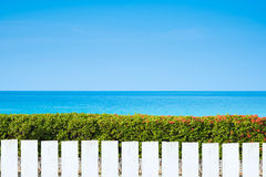 White picket fence and green leaves wall on blue sea. Background Stock Image