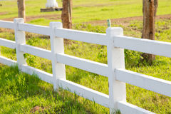 White picket fence. In the lawn Stock Photo