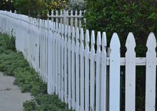 White Picket Fence Leading Lines Angles Layers. Neighborhood front yard enclosed in white picket fence against a backdrop of tall bushes and trees. Image of royalty free stock images