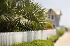 White picket fence with palms. Royalty Free Stock Photos
