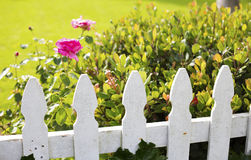 White picket fence Stock Photos