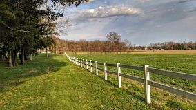 White picket fence in spring. A vinyl fence separates a pine forest and field under dramatic skies on a sunny sky Royalty Free Stock Photos