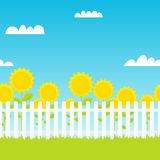 White picket fence with sunflowers Royalty Free Stock Image